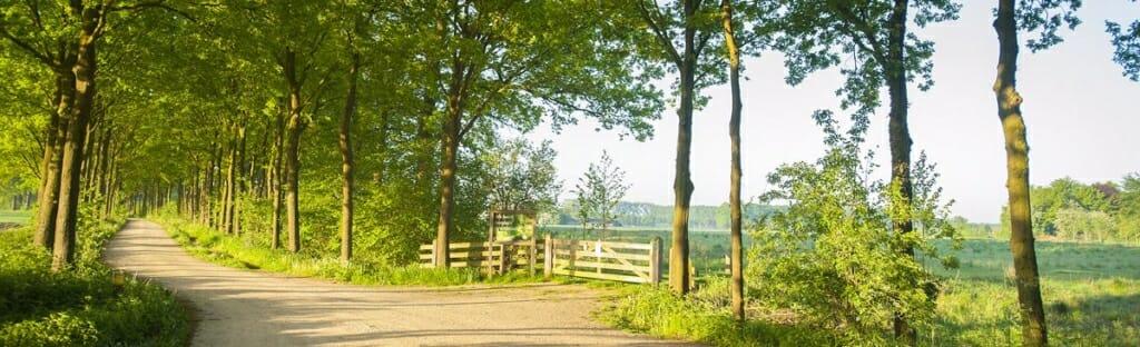 Lente op natuurbegraafplaats Slangenburg