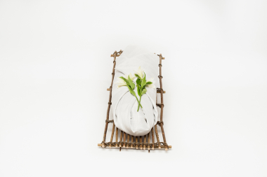Rang mai zijde lijkwade - Takkenbaar - Wikkelgoed 1