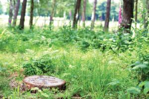 Regels natuurbegraafplaatsen