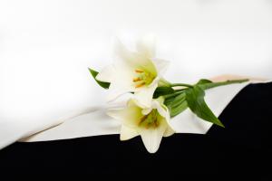 Zelfgeplukte bloemen, betaalbare uitvaart